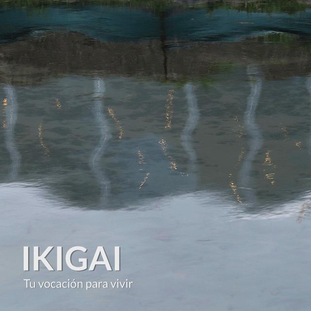 ikigai-carta-astral